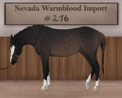 Nevada Warmblood 216 by BRls-love-is-MY-Live