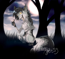 Pooka at night by LillHanna