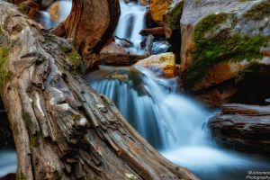 The Log in the Creek by mjohanson