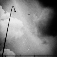 light guide by mahendrasaja