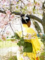 Yellow Yukata and Leaf Obi by HimeGabi