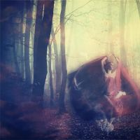 The Autumn Sorceress by UntamedUnwanted