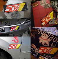 Team 5Ds bumper sticker uses by slifertheskydragon