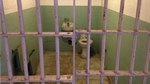 Alcatraz Cell by pauliesworld