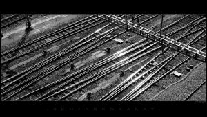 Rails by Pitri72