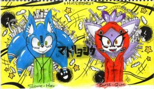 Matryoshka - Sonic ~ Blaze by ghostgirl43