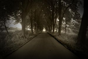 The Long Forgotten Road by TimeCapTurer
