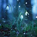 Snow in March by EliseEnchanted