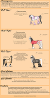 Acineequine Breed Sheet: NEW by Utakame