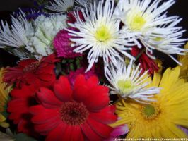 Mixed Flowers 5 by comwhizz101