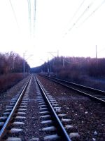 Rail by Real99