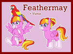 Feathermay ref (G4 toy-only) by Bakufoon