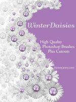 Free Winter Daisies Photoshop Brushes plus Cutouts by ibjennyjenny