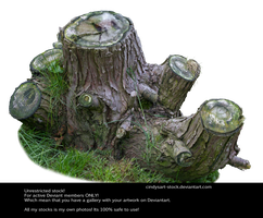 Stump 2 By Cindysart-stock by CindysArt-Stock