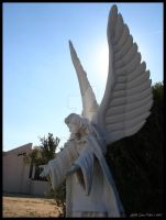 Angels Among Us IV by AshlieNelson