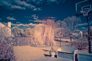 D7000 Infrared by BiOzZ
