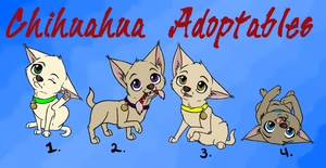 Chihuahua Adoptables - Closed by CinnabunAni