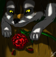 I'll Miss You, My Rose... by JacktheFireWolf