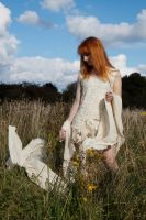 Meadow stock 4 by Random-Acts-Stock