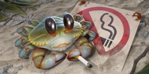 Rebel Crab by Darkodev