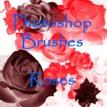 Photoshop ROSE brushes by vaia