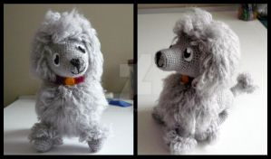 Usus the Poodle by Dicita