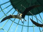 Pterodactyls 2 by CatwomanofTheSouth