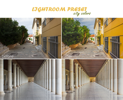 Lightroom preset by juliaundercover