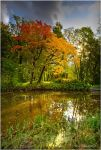 Autumn ..65.. by my-shots