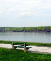 Bench on the Danube river by milunko