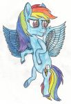 Life of Dashie by ThePegasusEffect