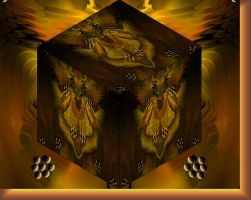 PUZZLE BOX 1 by live2b