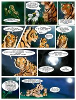 Daina Tigress of Pampas 55 by TigresaDaina