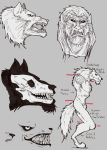 Werewolf Tutorial by Demorta