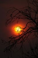 Smoky Sunset by szekley