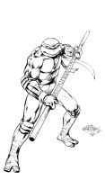 TMNT Donatello by MatiasSoto