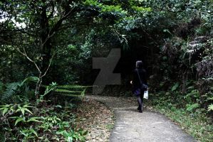 Lost in Hong Kong Woods by Metahawk1