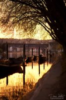 Boats in the golden water by LinsenSchuss