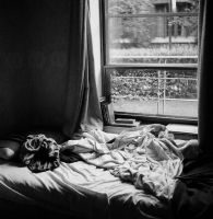 Other Bed by Acquavallo