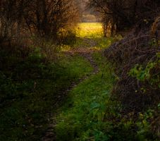 Path to light by Livath