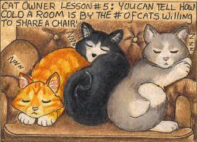 Cat Owner Lesson 5 - Art Card by stephanielynn