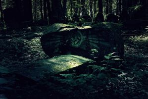 Old cemetery by aniaw