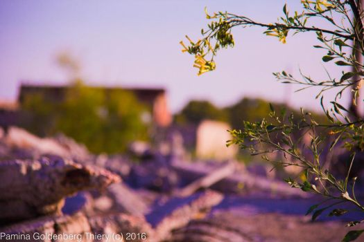 Epecuen by paminagolthier