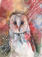 Another Owl by KristenFox13
