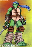 TMNT - :The Valiant Leonardo: by StephRatte