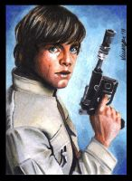 Son of Skywalker by SSwanger