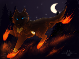 .:Night Runner:. by DOLFIY