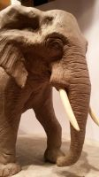 Elephant by Samsara-Agape