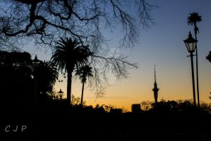 Auckland from the Domain by afriendof-ours