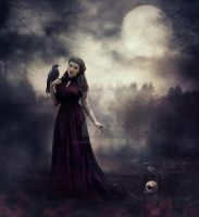 Under The Moonlight by AndyGarcia666